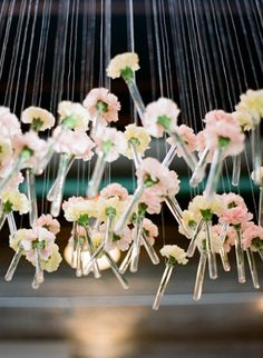 flowers hung from the ceiling