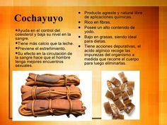 propiedades del Cochayuyo