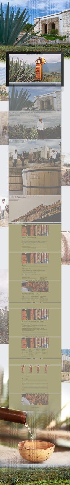Propuesta de rediseño web para Mezcal Oro de Oaxaca  Art Direction, UI/UX, Web Design