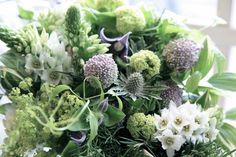 オーニソガラム/コニファー/花どうらく/花屋/花の壁/http://www.hanadouraku.com/flower arrengement/