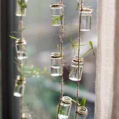 This Set of Rope Hanging Planter Small Glass Planter is just one of the custom, handmade pieces you'll find in our planters & pots shops. Hanging Glass Planters, Flower Planters, Hanging Plants, Indoor Plants, Hanging Terrarium, Hanging Rope, Terrarium Containers, Terrarium Plants, Container Plants