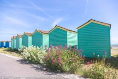 A row of pretty green beach huts with wild flowers by the sea at Littlehampton :: Beach hut hunting in West Sussex — Beautiful Simplicity