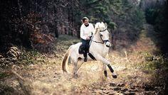 Tierärztliche Praxis für Pferde . Gut Genshagen