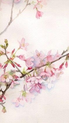 Branche d'arbre rose.