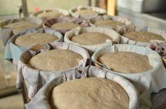 ロケットストーブ式石窯について、今、書けること。 : わざわざのパン+ Stuffed Mushrooms, Cookies, Vegetables, Desserts, Food, Stuff Mushrooms, Crack Crackers, Tailgate Desserts, Deserts