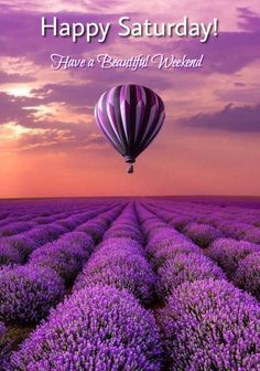 Good Morning Saturday, Happy Saturday, Saturday Quotes, Diy Painting, Painting Frames, Bon Weekend, Paint By Number Kits, Purple Aesthetic, Google Images