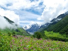 The Valley of Flowers in Uttarakhand is an absolute treasure of natural beauty
