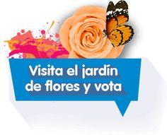 Inicio - Feria de las Flores EPM