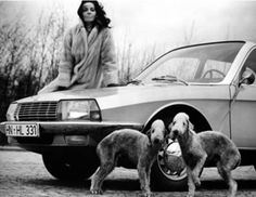 1968 NSU Audi And Go-Go Girl And Bedlington Terrier Dog Factory Photo