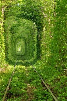 walk through the Tunnel of Love in Klevan, Ukraine
