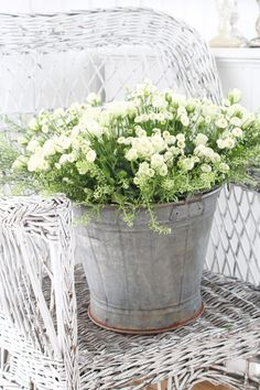 white Miniature Rose and white Sweet Alyssum in an old galvanised bucket sits on a white wicker chair ~ pretty