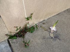 chrisbmarquez: Street Art by David Zinn (Curated Art Resource and Visual…