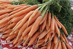 Anchorage Alaska vegetable garden planting dates - Cooperative Extension Service | Horticulture