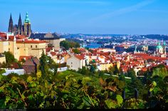 Private Full-Day Prague Tour from Vienna Spend a full day exploring the highlights of Prague on a private tour that includes transportation from Vienna hotels. See Prague's top attractions and get an introduction to the city's highlights on a walking tour with a professional local guide. This guided tour is designed for private groups of up to 8 people.Begin your full-day private tour by meeting your driver at your hotel in Vienna. Your private driver will take you on an sceni...