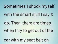 seat belt funny