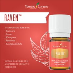 Young Living Essential Oils: Raven blend combines some of our most popular essential oils to provide a comforting aroma when applied to the neck and chest. For more information and to order yours, visit: WWW. Raven Essential Oil, Essential Oils Guide, Patchouli Essential Oil, Therapeutic Grade Essential Oils, Essential Oil Uses, Natural Essential Oils, Panaway Essential Oil, Natural Oils, Natural Health
