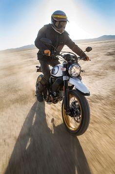 2017 Ducati Scrambler Desert Sled off-road action