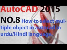 How to select multiple object in auto cad in urdu/Hindi language.