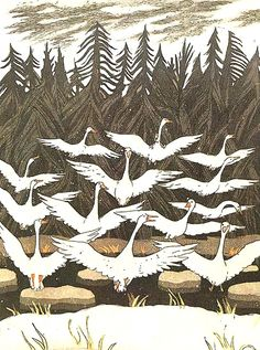 """wonderful trip Niels with wild geese""  Illustrator Boris Diodorov   Author Selma Lagerlöf   Translated By Z. Danubian, A. Lubarskaja   Country Russia, USSR   Publication date 1979"