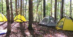 Best camping recipes - including foil meals, no utensil meals, pie-iron recipes, etc.