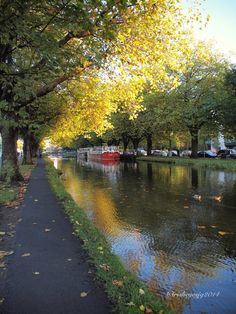 The Grand Canal, Dublin,