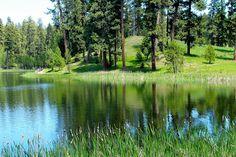 Walton Lake, Ochoco National Forest 6/15/2013