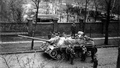 A Jagpanzer IV L/70 Lang