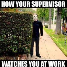 Literally turn around and eyes everywhere.