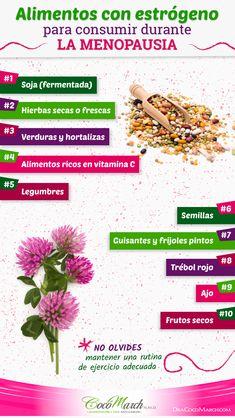 ✅ Consume #Alimentos Con #Estrógeno En La #Menopausia Natural Medicine, Menu, Nutrition, Health, Nature, Menopause, Beauty, Healthy Foods, Essential Oils