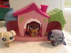 Littlest Pet Shop 3 Dogs House Dachshund Purple Bassett Hound Brown Boxer Tan | eBay