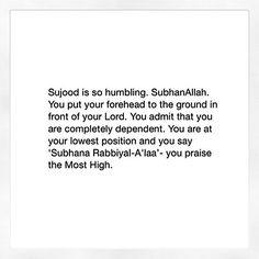 sujud are our pride💯❤ Allah Quotes, Muslim Quotes, Quran Quotes, Faith Quotes, Beautiful Islamic Quotes, Islamic Inspirational Quotes, Motivational Quotes, Religion Quotes, Islam Religion