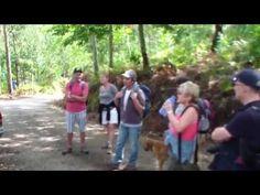 ▶ Portugal Algarve Wandern Monchique Korkeiche - YouTube