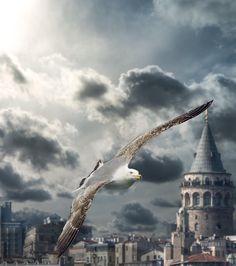 Galata Kulesi-İstanbul   by ilkinkaracan