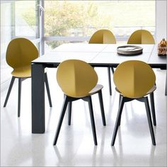calligaris omnia xl 3 meter table and calligaris complete collection available at Harrogate Interiors. Official UK stockists of calligaris furniture. Swivel Chair, Armchair, Dining Chairs, Dining Table, Single Chair, Kitchen Dining, Furniture Design, Stool, Lounge