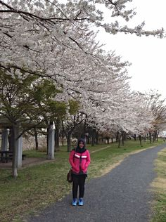 Sakura with me