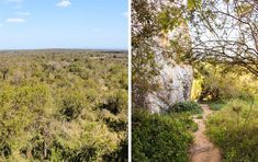 A roundup of the best places in the Kruger National Park to park, sit, watch and enjoy a beautiful view. Kruger National Park, National Parks, Hamilton, The Good Place, Gap, Wildlife, Rest, Country Roads, Camping