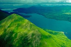 Kodiak Island (Alaska): home to the Kodiak bears and a transplanted herd of bison
