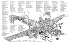Avro Shackleton (Cut Away) Navy Aircraft, Ww2 Aircraft, Military Aircraft, Aircraft Engine, Military Weapons, Avro Shackleton, South African Air Force, Airplane Car, History Online