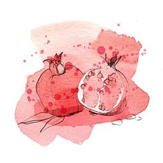 Pomegranate fruit for Weleda Germany #illustration #weleda #pomegranate #cosmetics #shower #fruit #juicy #red #fresh #commission #watercolor #ink #pencil #ekaterinakoroleva #berlin