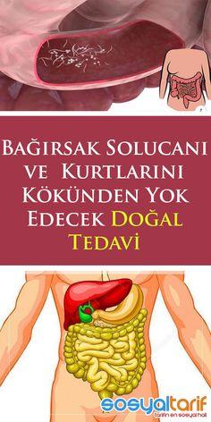 Spring Tutorial, Herbal Medicine, Diet And Nutrition, Istanbul, Herbalism, Health Care, Weight Loss, Kurt, Food
