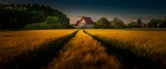 The Driveway by Rolf Nachbar
