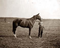 "Here we present a rare image of General George G. Meade's horse, ""Baldy."" It was taken in 1863."