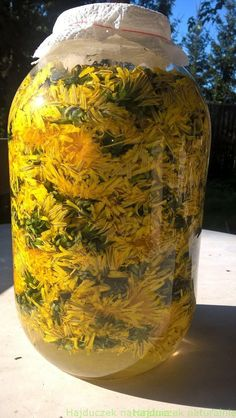 ocet mniszkowy Food Design, Preserves, Herbalism, Mason Jars, Healthy Living, Remedies, Food And Drink, Herbs, Canning