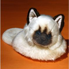 Cat Slippers. omg i want Funny Slippers, Himalayan Cat, Cats, Clothing, Animals, Shoes, Outfits, Gatos, Animales