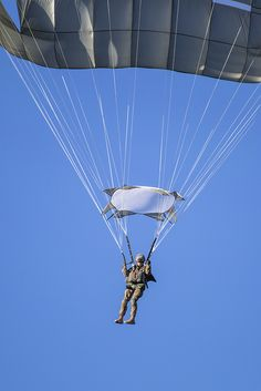 Vertical Jump Training - Jump Training #JumpTraining