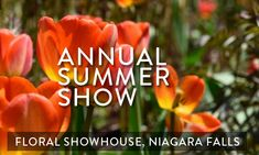 FLORAL SHOWHOUSE ANNUAL SUMMER SHOW   @ NIAGARA FALLS ( Jun 16 - Sep 9, 2018 ) Welcome to enjoy stunning blooms of summer and the Floral Showhouse, just a short walk south of the Falls. A perfect way to escape from the hustle and bustle of everyday life. Read more..