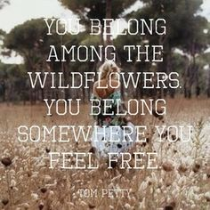 Wildflowers Inspiration Motivation #quotes #quotiful Create your own picture quote and download the app at www.quotiful.com