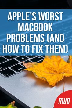 Apple's Worst MacBook Problems (And How to Fix Them) --- If you've purchased a MacBook and notice an issue, there might be a way around it. Here are some of Apple's biggest MacBook hardware blunders, and how to fix them if you're affected. Macbook Pro Ssd, Macbook Pro Tips, Macbook Pro Models, Macbook Desktop, Newest Macbook Pro, Macbook Laptop, Mac Laptop, New Macbook, Laptop Bags