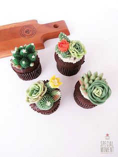 http://www.special-moment.today/ succulents cupcakes