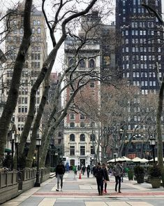 It's still Spring in Bryant Park, Manhattan, NYC